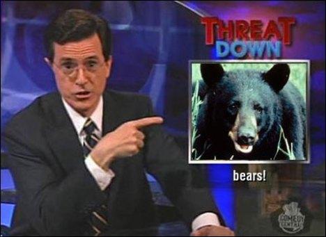 Bears - Threatdown