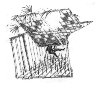vietnam tiger trap