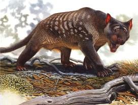 Thylacoleo_carnifex-PeterSchouten megafauna