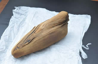 mummy ibis looks like vagina
