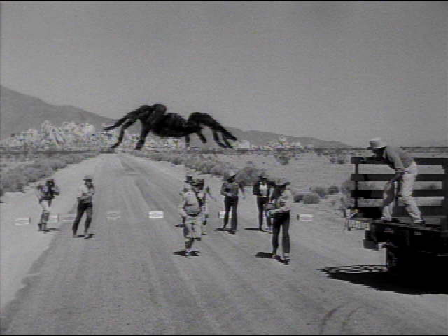 tarantula(movie)