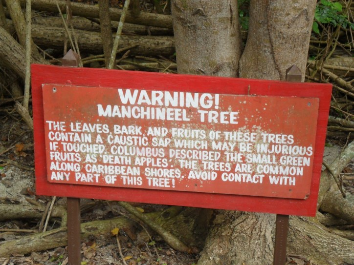 manchineel-tree-warning-sign
