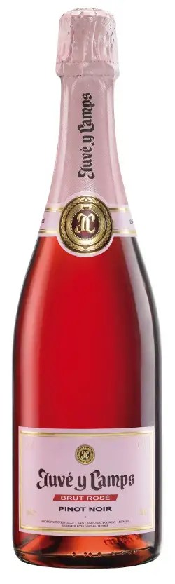 Juve y camps brut rose pinot noirs
