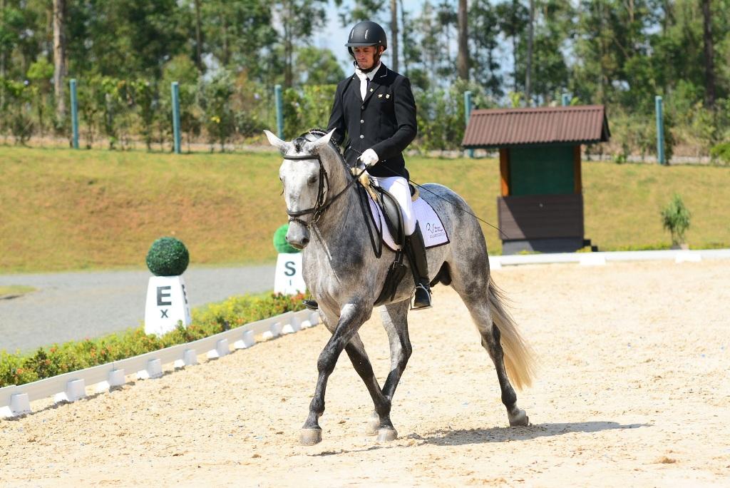 Qualidade premiada: Expo Internacional do Cavalo Lusitano em São Paulo