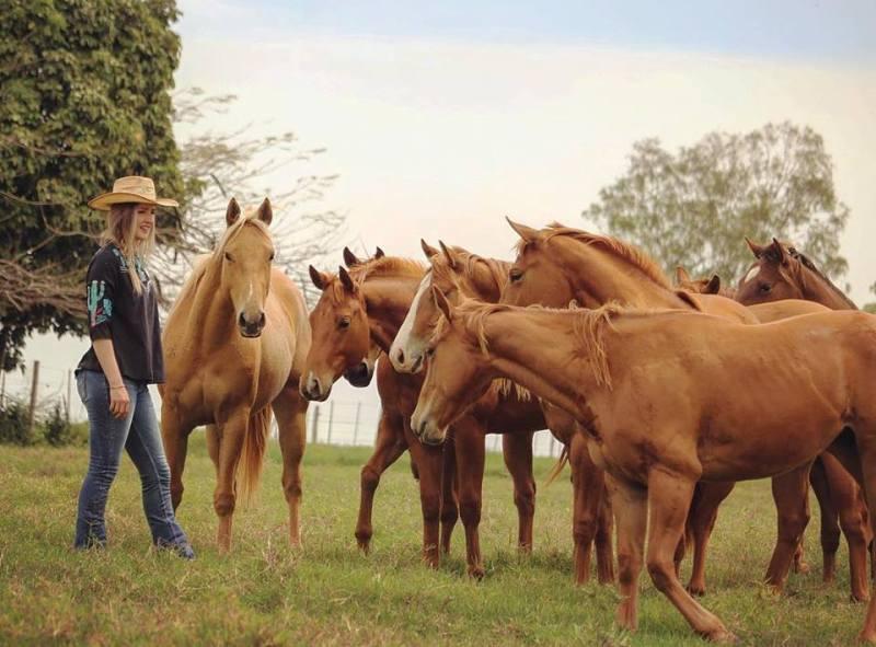 Haras Agae faz parte da história de Bauru e do Quarto de Milha no Brasil