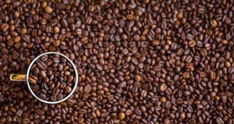 Safra de café do Brasil será recorde em 2020