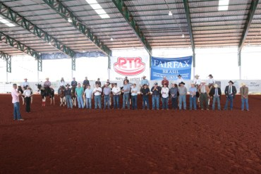 abertura Nacional e Potro do Futuro da raça Paint Horse 2019