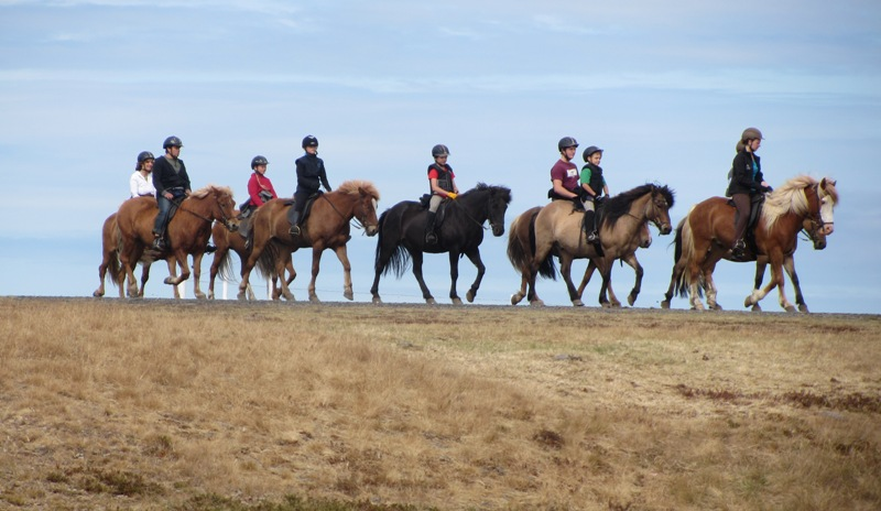 Cavalgada na Islândia
