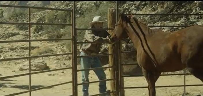 Out Of The Wild - Uma Nova Chance Deixar o passado para trás será a única coisa que salvará a vida de um cowboy Uma Nova Chance conta a história de Henry McBride