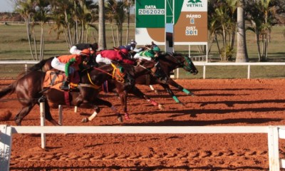 Zion Verde vence GP Presidente do Centro Hípico do Oeste Corridas sem público externo voltaram a ocorrer no Jockey Club de Sorocaba; Brave Granite venceu o outro páreo do dia