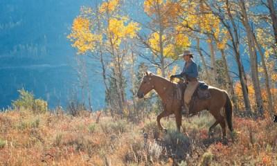 Paulo Junqueira, em sua coluna da semana, continua te levando para locais com as cavalgadas mais luxuosas, destinos especiais