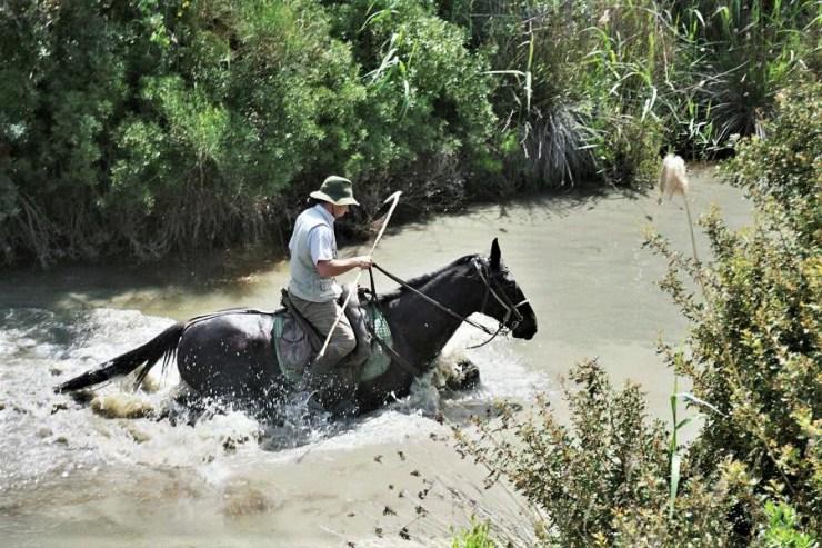 Paulo Junqueira Arantes fala em sua coluna da semana sobre o seu fascínio pelas Tradições Equestres em uma cavalgada pela Toscana
