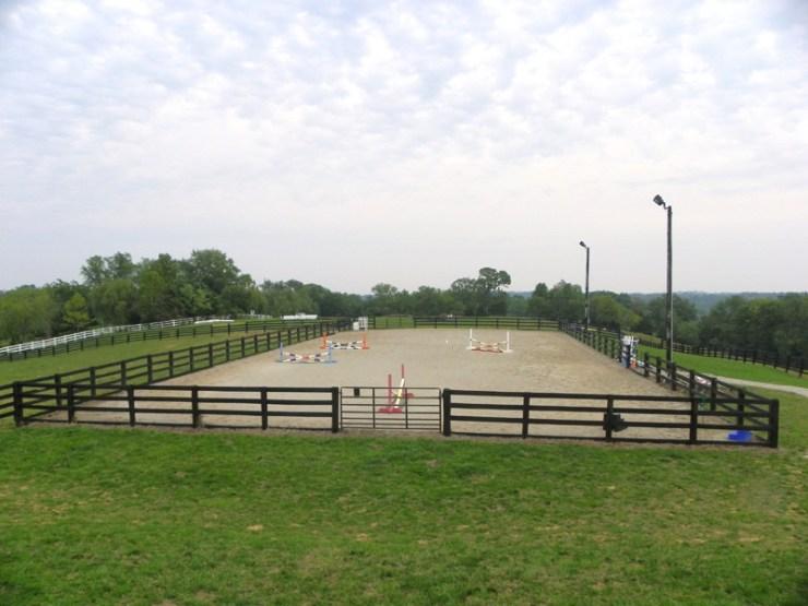 A pista é um dos lugares que mais os cavalos ficam em determinados períodos da vida. Como não errar na hora de saber o que é melhor para eles?