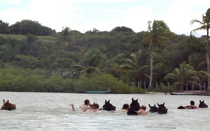 Paulo Junqueira compartilha sua experiência de nadar com o cavalo em viagens pelo Brasil e pelo mundo; experiências da África a Bahia