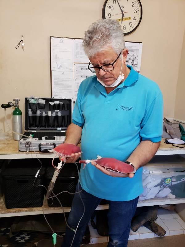 Curso de Ozonioterapia aplicada para equinos com Dr. Haroldo Vargas acontece em são Paulo no final de outubro, em São Pedro/SP, Haras NSG