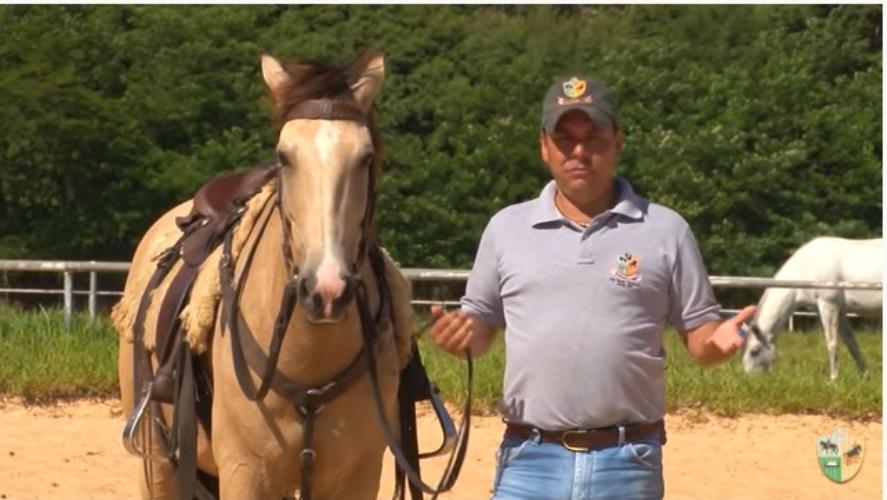 TV UC – Cavalo que pula ao montar