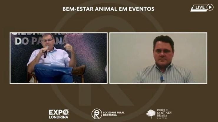 Bem-estar animal em eventos é tema de Live, e 4 personalidades do meio equestre debateram esse assunto de grande importância para o segmento