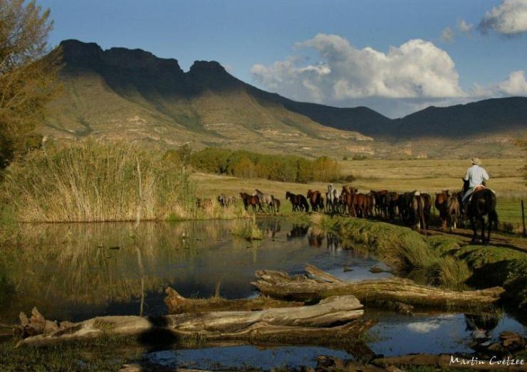 Cavalgada na África do Sul - Reserva de Witteberg