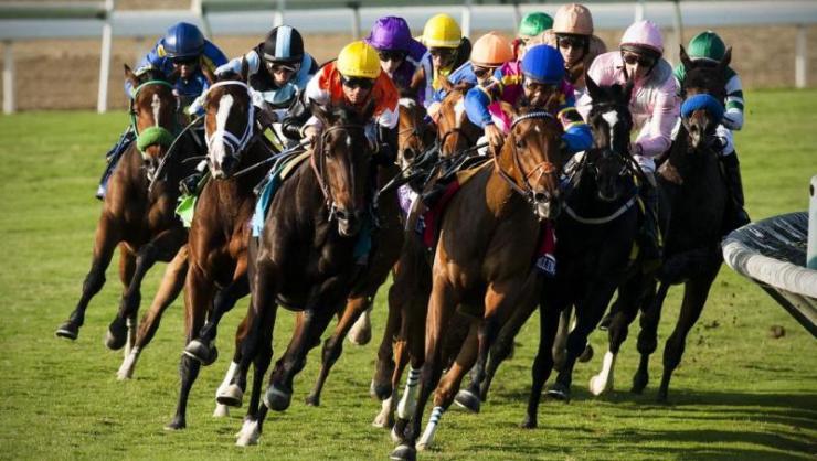 Corrida, ou Turfe, é um esporte popular de velocidade. Então, a corrida competitiva de cavalos é um dos esportes mais antigos da humanidade
