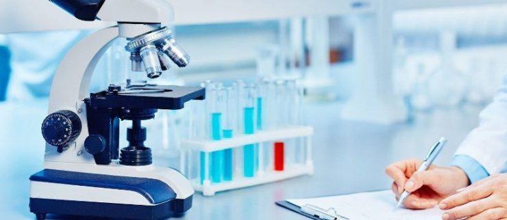 Reunião técnica, promovida pelo IBEqui, buscou identificar as dificuldades e apontar soluções para os exames em laboratórios veterinários