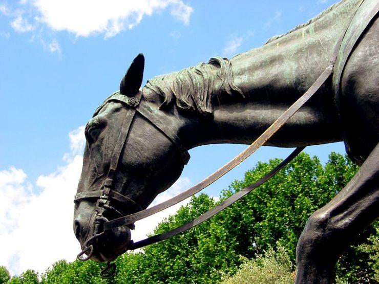 Antes de mais nada, Rocinante é um dos mais famosos cavalos da arte literária; companheiro fiel do famoso Dom Quixote de La Mancha