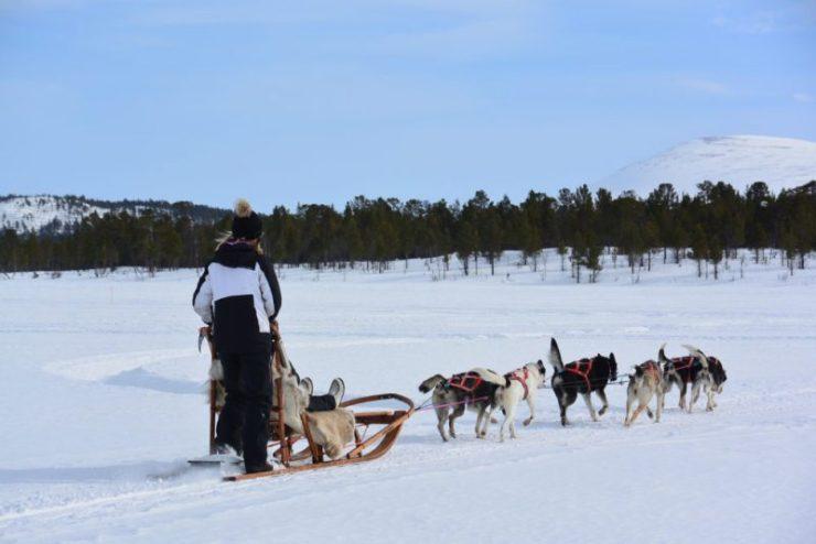 Cavalgada de Inverno: Paulo Junqueira relata, junto com os detalhes dessa cavalgada, um pouco sobre a cultura Sami, clima e o hotel de gelo