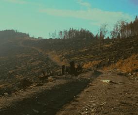 Klimatická chyba