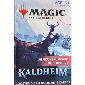 Magic the Gathering Kaldheim booster d'extension – Français