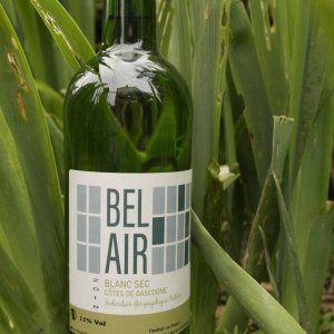 Bel Air | Côtes de Gascogne | Vin Blanc Sec