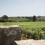 Vins de Bourgogne Cave le petit grain rieumes