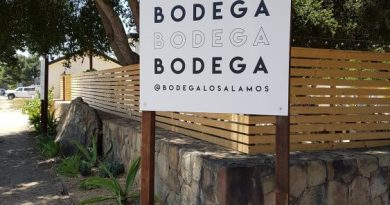 Bodega beer and wine garden, Los Alamos, California.