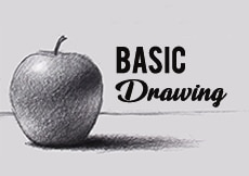 Learn basic drawing