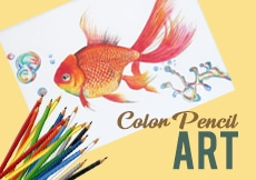 color pencil art