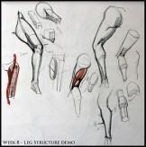estrutura perna