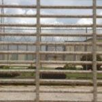 Prison still 'squalid', says UK inspector