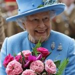 Queen using Cayman investment fund