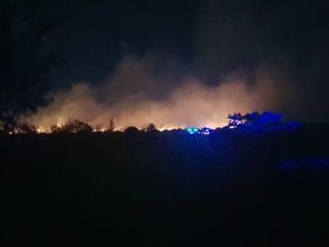 Cayman News Service, Bush Fire