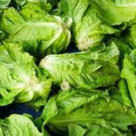 Romaine lettuce pulled from local stores