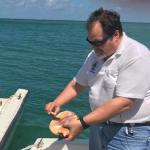 Conch survey underway to check state of population