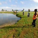Airport wildlife transferred to new ponds