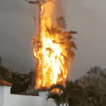 Lightning triggers tree and pole fire