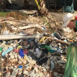 Beach cleaners pick up nearly 1,000lb of plastics