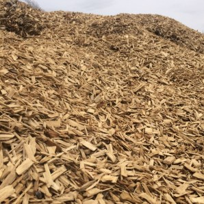 WoodChips 4/19