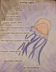Simone McCay, 5th grade, Honorable Mention