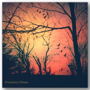 Sundown by Cazartco