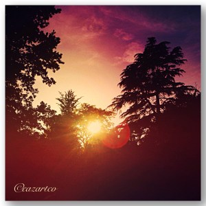 Sun Dance by Cazartco