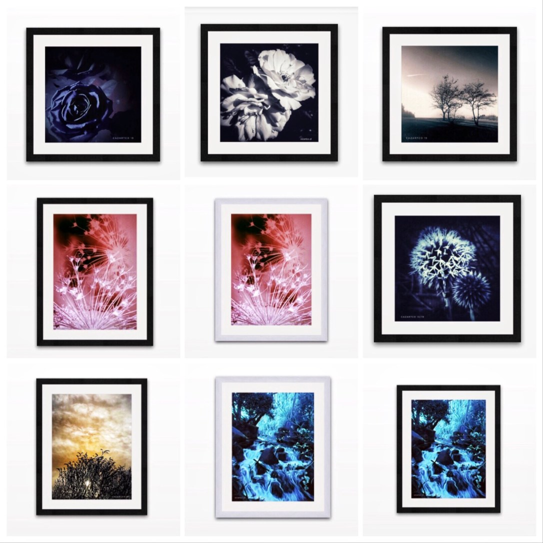 Framed Print collection at cazartco