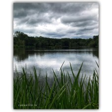 The Lake by cazartco