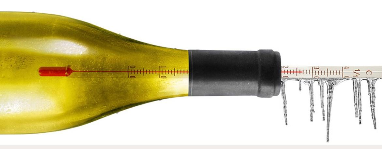 ¿Por qué debemos prestarle atención a la temperatura del vino?