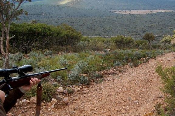 seguridad-responsabilidad-caza
